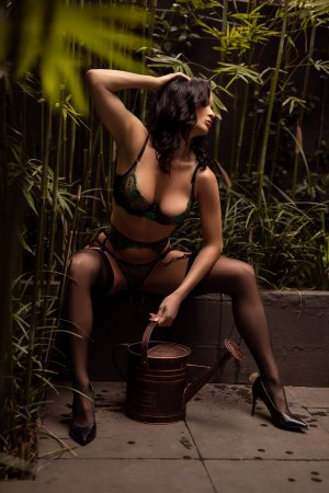 Neyssa tantra massage in Crofton
